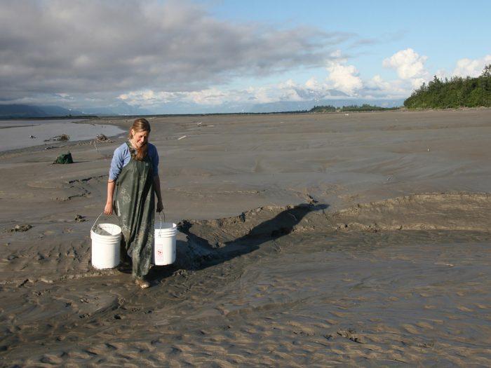 Alaska glacial mud