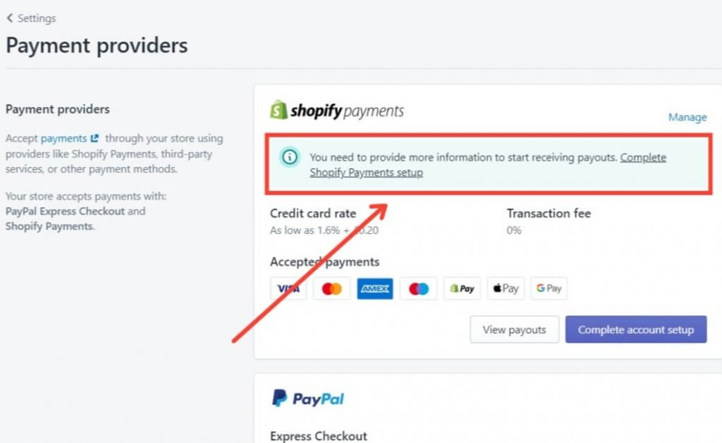 Shopify payments page