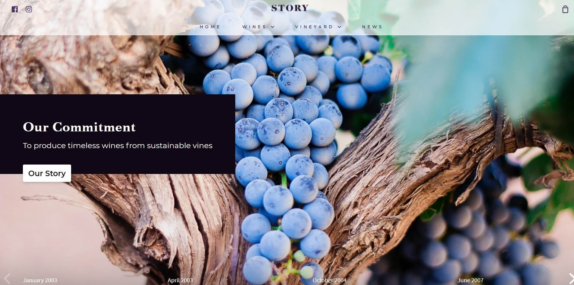 Story Shopify theme image